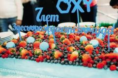 Хроника-Окси_188_ol10115090_11